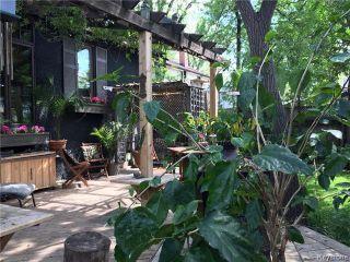 Photo 17: 117 Renfrew Street in Winnipeg: River Heights Residential for sale (1C)  : MLS®# 1716486