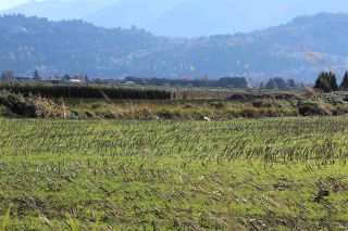 Photo 4: 46680 CHILLIWACK CENTRAL Road in Chilliwack: Chilliwack E Young-Yale Land for sale : MLS®# R2510955