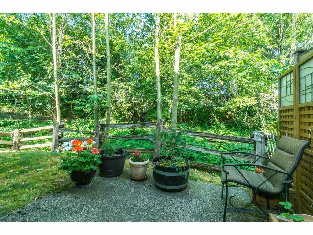 """Photo 20: Photos: 32 46840 RUSSELL Road in Sardis: Promontory Townhouse for sale in """"Timeber Ridge"""" : MLS®# R2359001"""