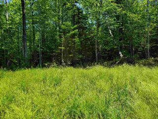 Photo 3: 8 Shady Lane in Loch Broom: 108-Rural Pictou County Vacant Land for sale (Northern Region)  : MLS®# 202117520