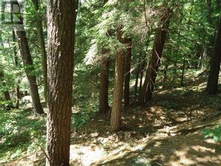 Photo 34: 400 MARY LAKE (GRYFFIN BLUFFS LANE) Lane in Port Sydney: Vacant Land for sale : MLS®# 40126538