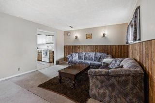 Photo 27: 4772 Rundlehorn Drive NE in Calgary: Rundle Detached for sale : MLS®# A1144252