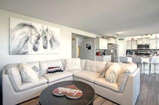 Photo 19: 106 NAPOLEON Crescent: St. Albert House for sale : MLS®# E4262401