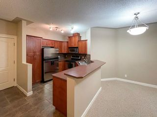 Photo 8: 111 10 Discovery Ridge Close SW in Calgary: Discovery Ridge Apartment for sale : MLS®# A1051537