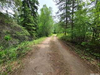 Photo 6: Tomilin Acreage in Nipawin: Residential for sale (Nipawin Rm No. 487)  : MLS®# SK863554