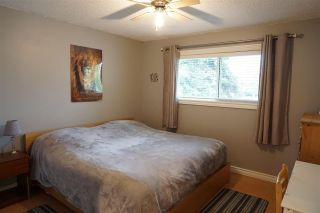 Photo 13: 10040 163 Street in Edmonton: Zone 22 House for sale : MLS®# E4244844