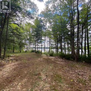 Photo 10: 317 Forest Point Loop in Labelle: Vacant Land for sale : MLS®# 202124977