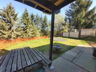 Photo 35: 31447 WINTON Avenue in Abbotsford: Poplar House for sale : MLS®# R2566181