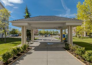 Photo 21: 2212 6224 17 Avenue SE in Calgary: Red Carpet Apartment for sale : MLS®# A1115091