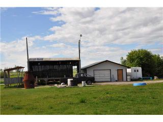 Photo 18: 243017 Range Road 240: Rural Wheatland County Residential Detached Single Family for sale : MLS®# C3624413