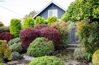 Photo 24: 922 Lawndale Ave in VICTORIA: Vi Fairfield East House for sale (Victoria)  : MLS®# 800501