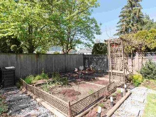Photo 35: 8909 204 Street in Langley: Walnut Grove House for sale : MLS®# R2570370