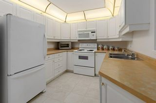 Photo 10: 307 6703 172 Street in Edmonton: Zone 20 Condo for sale : MLS®# E4255164