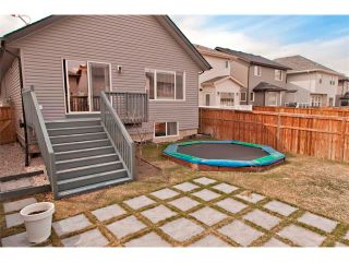 Photo 23: 139 AUBURN BAY Close SE in Calgary: Auburn Bay House for sale : MLS®# C4008235