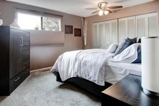 Photo 15: 371 Scenic Glen Place NW in Calgary: Scenic Acres Detached for sale : MLS®# A1089933