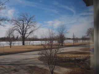 Photo 29: 1308 Crescent Road in Portage la Prairie: House for sale : MLS®# 202105436