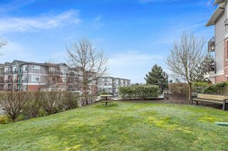"""Photo 25: 108 19530 65 Avenue in Surrey: Clayton Condo for sale in """"WILLOW GRAND"""" (Cloverdale)  : MLS®# R2536087"""