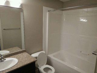 Photo 7: 3834 ALLAN Drive in Edmonton: Zone 56 Attached Home for sale : MLS®# E4228116