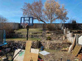 Photo 6: 14706 37 Street in Edmonton: Zone 35 House for sale : MLS®# E4239620