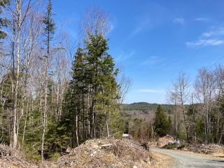 Photo 2: 65 Eaglet Lane in Musquodoboit Harbour: 35-Halifax County East Vacant Land for sale (Halifax-Dartmouth)  : MLS®# 202109854