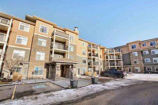 Photo 41: 301 6070 SCHONSEE Way in Edmonton: Zone 28 Condo for sale : MLS®# E4230605