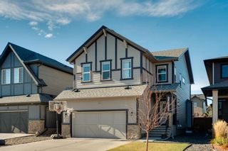 Main Photo: 248 Cranbrook Circle SE in Calgary: Cranston Detached for sale : MLS®# A1155591