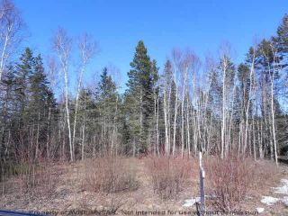 Photo 5: Lot 16 /17 Augsburger Street in Victoria Harbour: 404-Kings County Vacant Land for sale (Annapolis Valley)  : MLS®# 201902462
