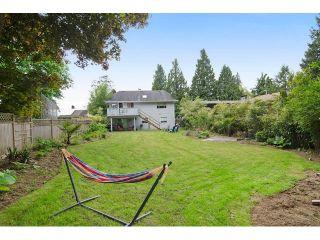 Photo 20: 11628 212TH Street in Maple Ridge: Southwest Maple Ridge House for sale : MLS®# V1122127