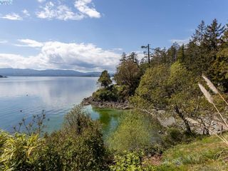 Photo 38: 11424 Chalet Rd in NORTH SAANICH: NS Deep Cove House for sale (North Saanich)  : MLS®# 838006