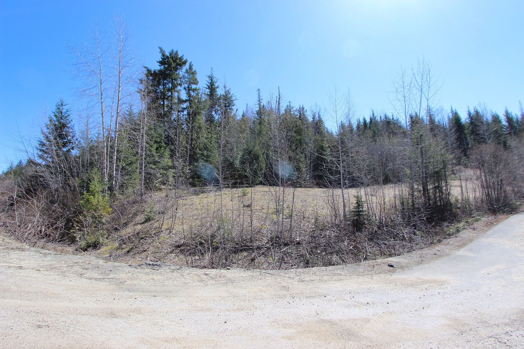 Main Photo: Lot 11 Ivy Road: Eagle Bay Vacant Land for sale (South Shuswap)  : MLS®# 10229941