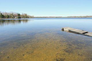 Photo 3: 1391 Portage Road in Kawartha Lakes: Rural Eldon House (Bungalow) for sale : MLS®# X4422672