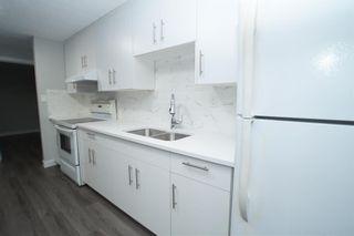 Photo 33: 367 Pinewind Road NE in Calgary: Pineridge Detached for sale : MLS®# A1094790