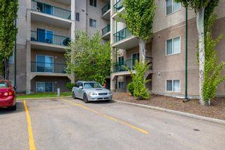 Photo 29: 425 11325 83 Street in Edmonton: Zone 05 Condo for sale : MLS®# E4247636