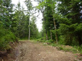 Photo 10: SL 14 950 Heriot Bay Rd in QUADRA ISLAND: Isl Quadra Island Land for sale (Islands)  : MLS®# 841835