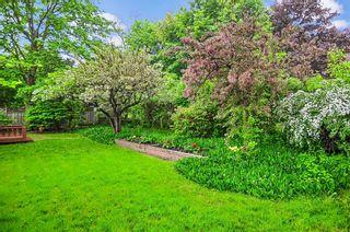 Photo 17: 34 Sanderling Place in Toronto: Banbury-Don Mills House (Bungalow-Raised) for sale (Toronto C13)  : MLS®# C4482488