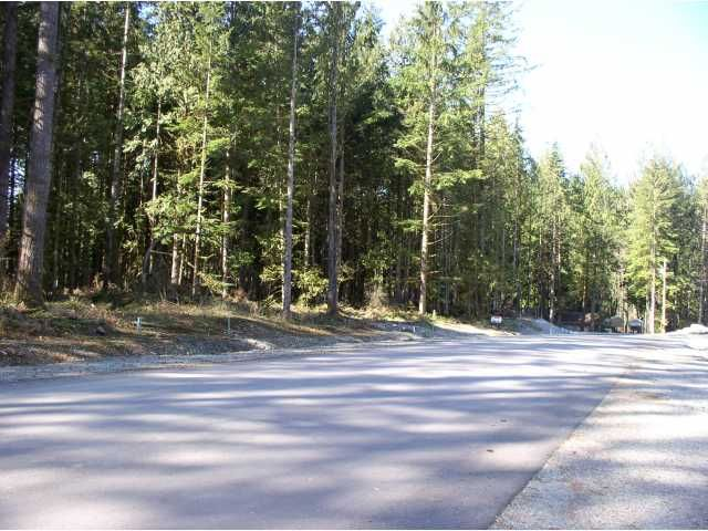 Main Photo: 12925 246TH Street in Maple Ridge: Websters Corners Land for sale : MLS®# V814105