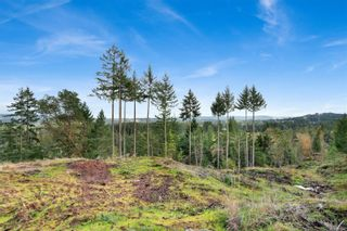 Main Photo: SL 2 Ferguson Rd in : Na North Jingle Pot Land for sale (Nanaimo)  : MLS®# 861042