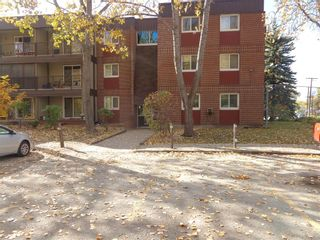 Photo 5: 302 476 Kenaston Boulevard in Winnipeg: River Heights Condominium for sale (1D)  : MLS®# 202101060
