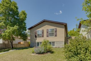 Main Photo: 3232 Dover Ridge Drive SE in Calgary: Dover Detached for sale : MLS®# A1122465