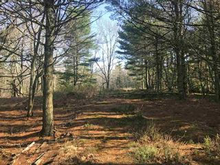 Photo 2: Lot 1A Huey Lake Road in Mount Pleasant: 405-Lunenburg County Vacant Land for sale (South Shore)  : MLS®# 202104629