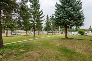 Photo 41:  in Edmonton: Zone 35 Condo for sale : MLS®# E4257107