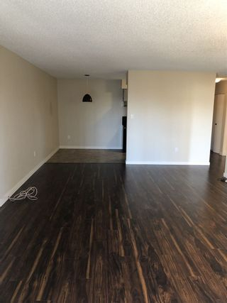 Photo 6: 407 4941 LOUGHEED Highway in Burnaby: Brentwood Park Condo for sale (Burnaby North)  : MLS®# R2331815