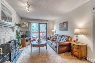 Photo 20: 12 Hawkfield Crescent NW in Calgary: Hawkwood Detached for sale : MLS®# A1120196