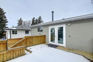 Photo 21: 429 1 Avenue NE: Airdrie Detached for sale : MLS®# A1071965