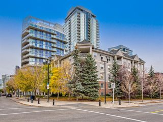 Photo 25: 516 630 8 Avenue SE in Calgary: Downtown East Village Apartment for sale : MLS®# A1065266