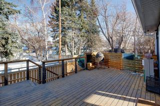 Photo 37: 12 Meadowlark Crescent SW in Calgary: Meadowlark Park Detached for sale : MLS®# A1091194
