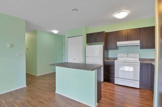 Photo 9: 205 155 Erickson Rd in : CR Willow Point Condo for sale (Campbell River)  : MLS®# 877880
