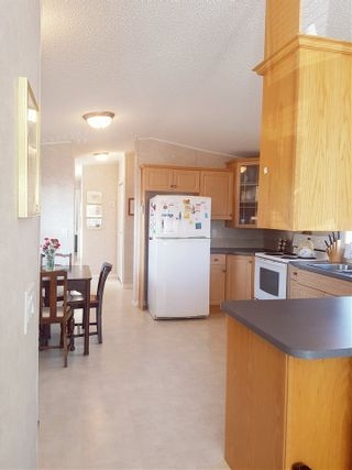 Photo 7: 19 9960 WILSON STREET in Mission: Stave Falls Manufactured Home for sale : MLS®# R2213959