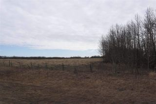 Photo 8: TWP 481 HWY 795: Rural Leduc County Rural Land/Vacant Lot for sale : MLS®# E4244581