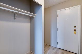 Photo 21: 204 3610 43 Avenue NW in Edmonton: Zone 29 Condo for sale : MLS®# E4258814